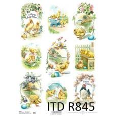 ITD-R0845