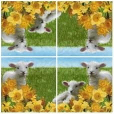 Szalvéta Bárányok