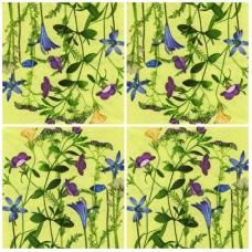 Szalvéta Virág